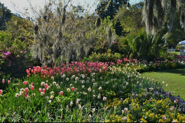 2011GardenTourHighlights016
