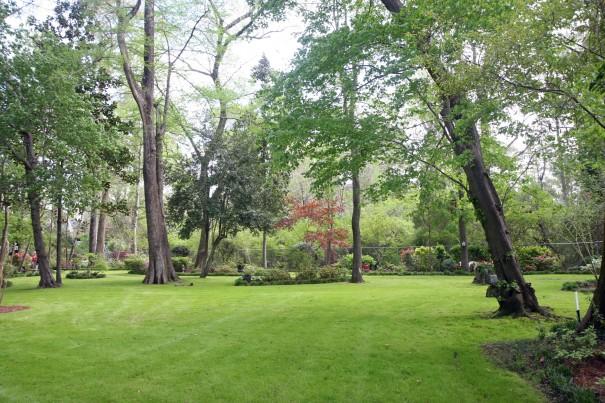 garden #4-5